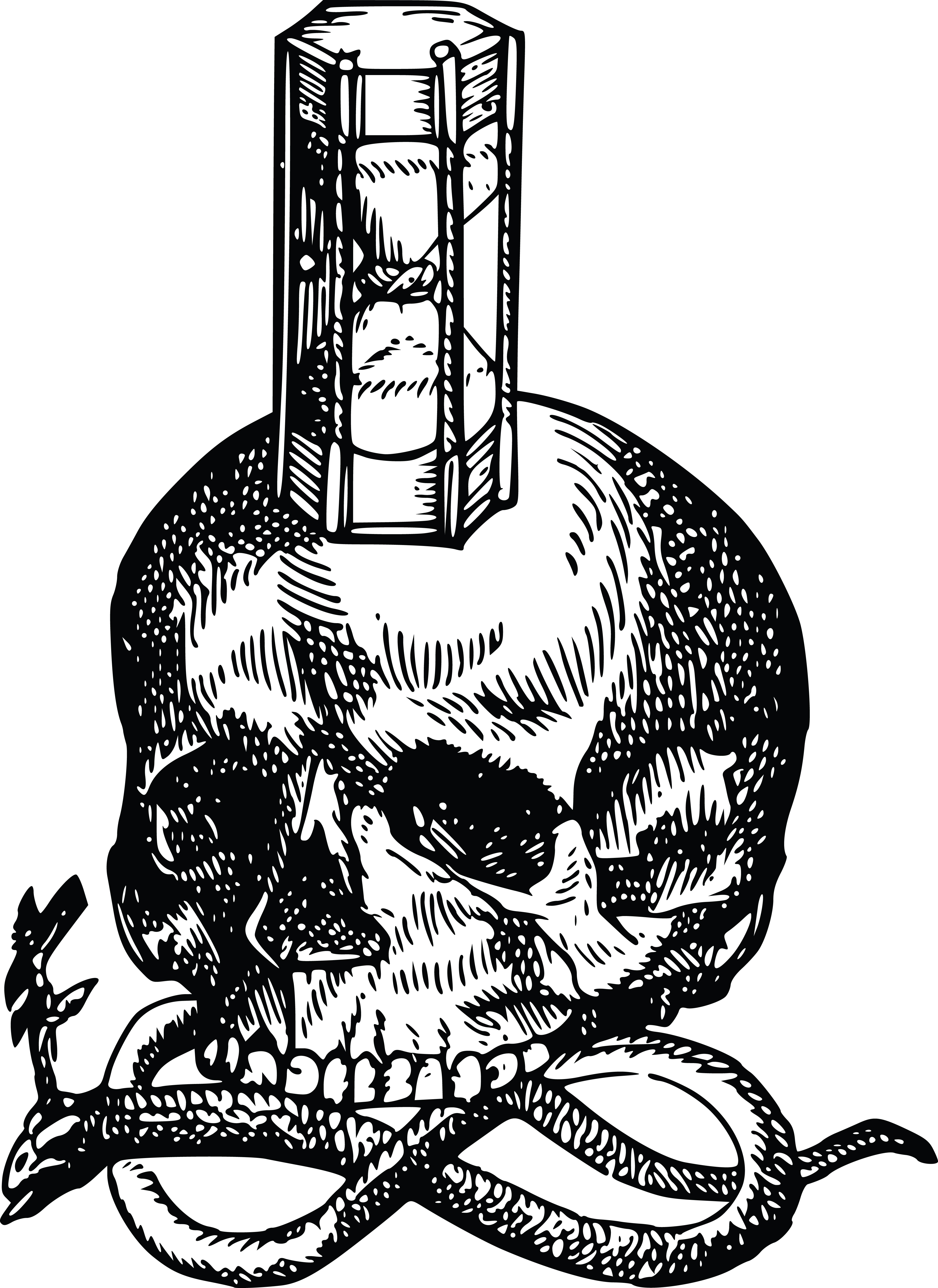 Free Clipart Of A Skull With An Hourglass And Snake