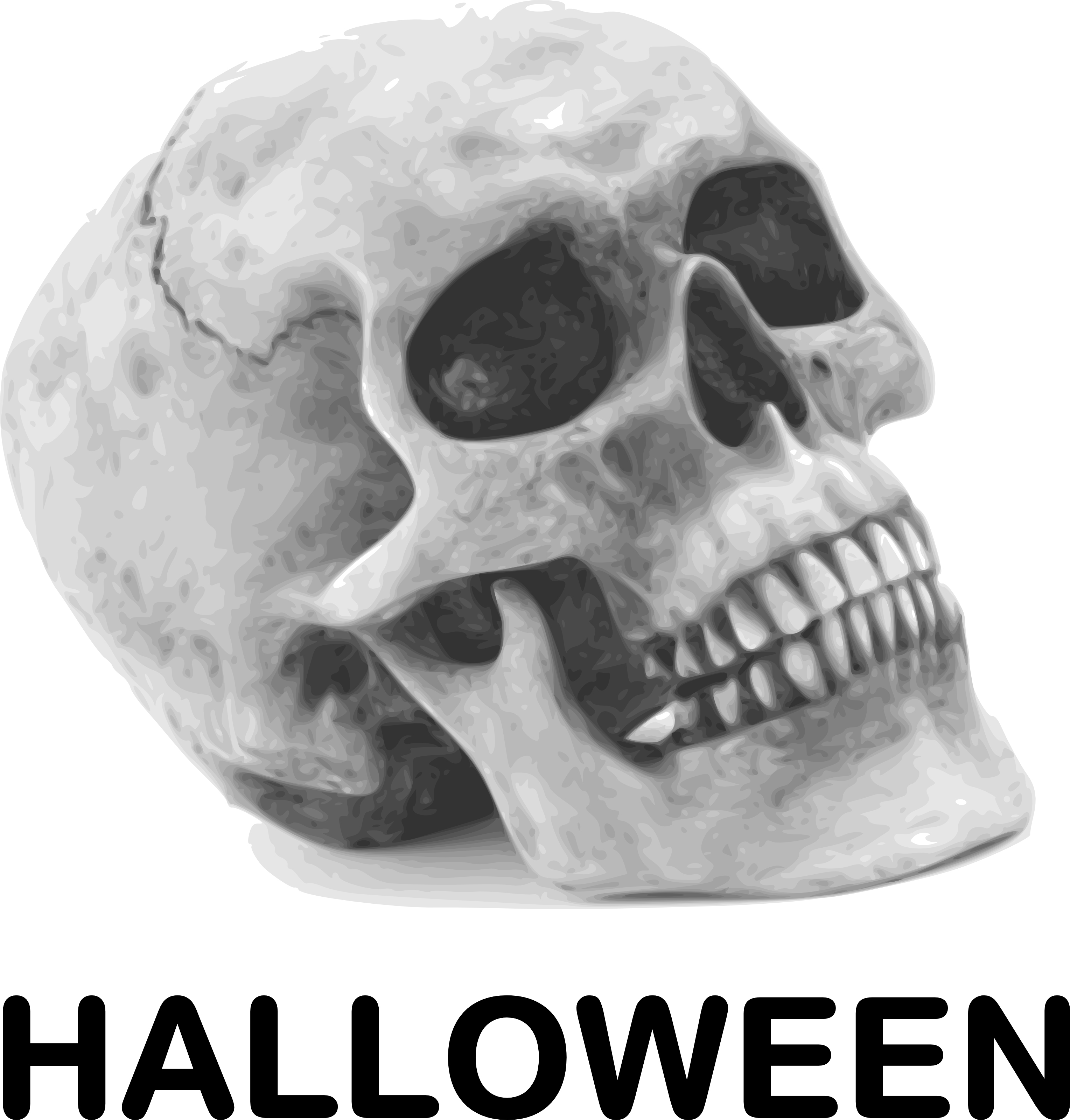 Skull With HALLOWEEN - Free Halloween Vector Clipart ...