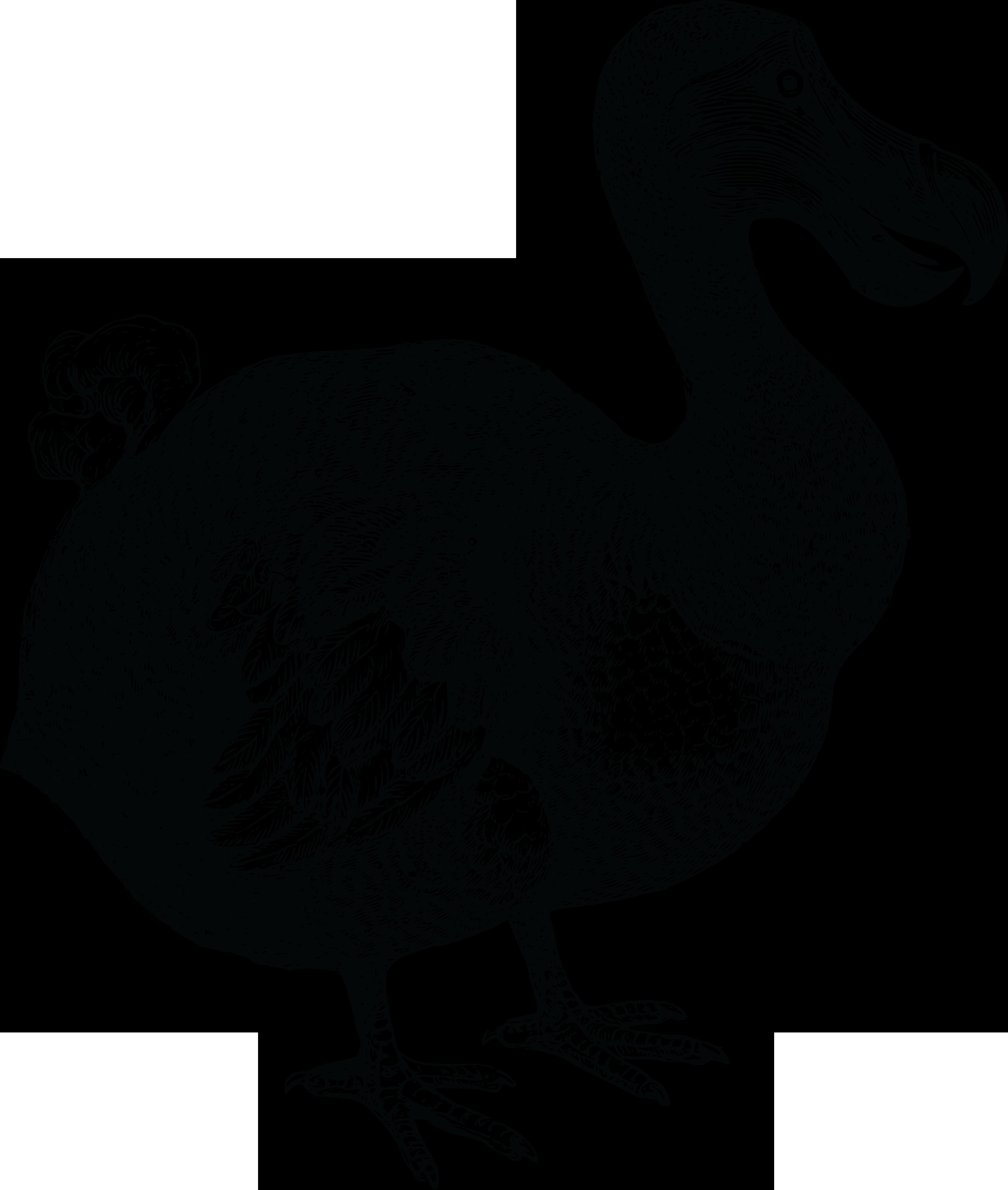 free clipart of a dodo bird Pilgrim Turkey Female Pilgrim Serving Turkey Dinner