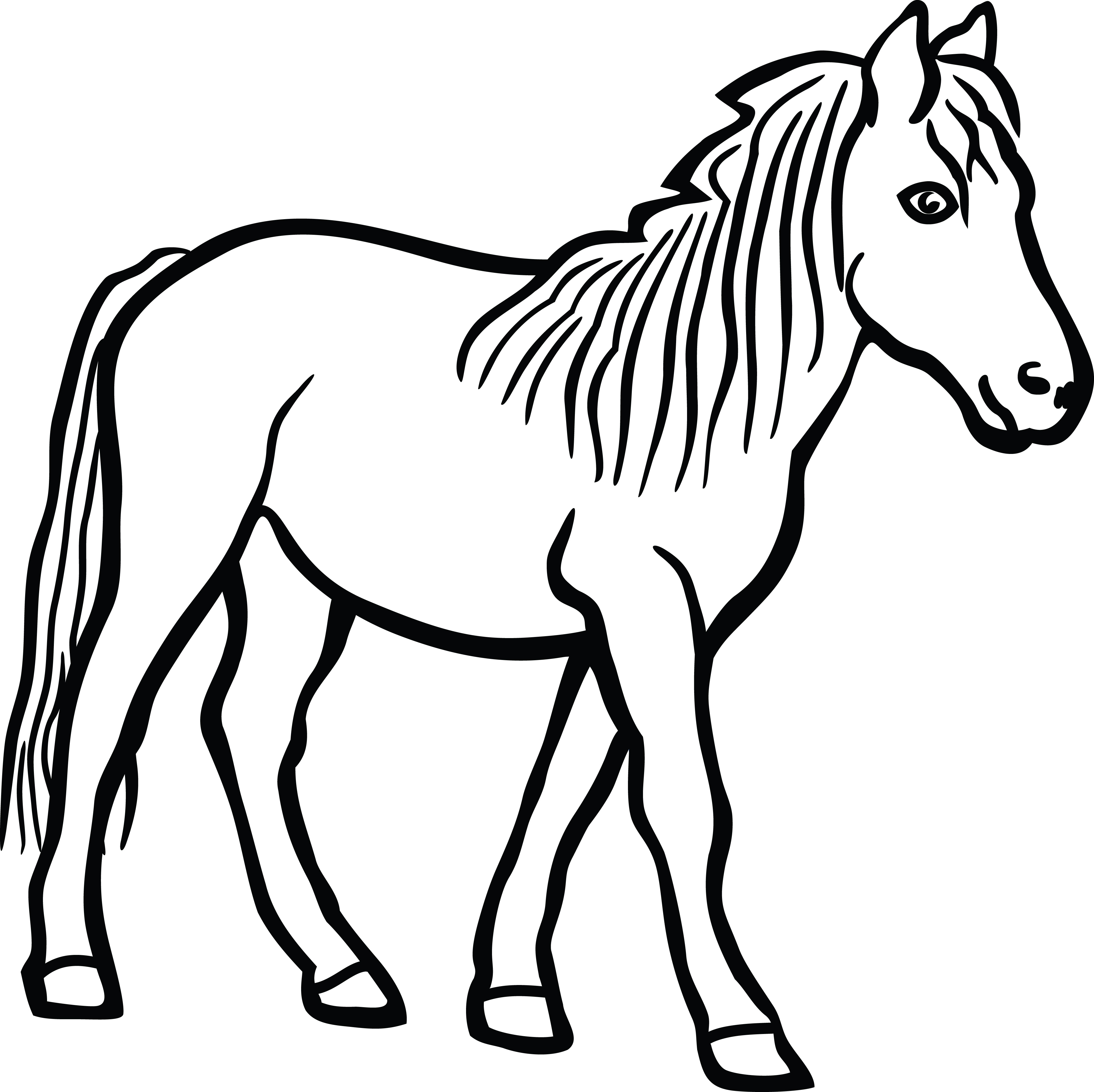 Horse Face Clipart Black And White