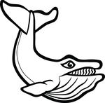 Free Clipart Of A Whale