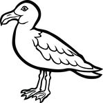 Free Clipart Of A Seagull Bird