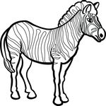 Free Clipart Of A Zebra
