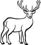 Free Clipart Of A Buck Deer