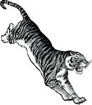 Free Clipart Of A Tiger Attacking