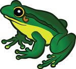 Free Clipart Of A Frog
