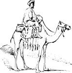 Free Clipart Of A Camel