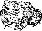 Free Clipart Of A Toad With Warts