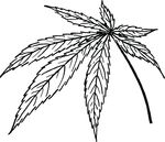 Free Clipart Of A Cannabis Leaf