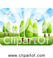 Free Clipart Of Landscape With Birds Trees Grass And Blue Sky