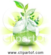 Free Clipart Of Green Earth Springtime With Growing Plants And Sunshine