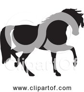 Free Clipart Of Black Horse Silhouette