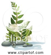 Free Clipart Of Fern Plants Pebbles And Flowers