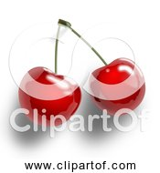Free Clipart Of Red Cherries