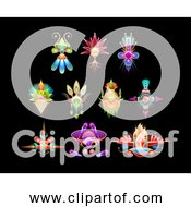 Free Clipart Of Embellish Set Over Black Background
