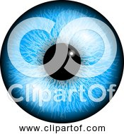 Free Clipart Of A Blue Eye