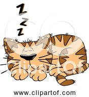 Free Clipart Of Cartoon Orange Cat Sleeping