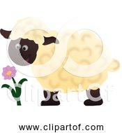 Free Clipart Of Cartoon Happy Sheep