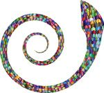 Free Clipart Of A Colorful Coiled Spiral Snake