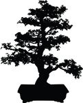 Free Clipart Of A Silhouetted Bonsai Plant