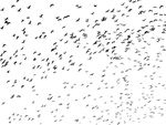 Free Clipart Of A Flock Of Birds
