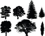 Free Clipart Of 7 Tree Silhouettes