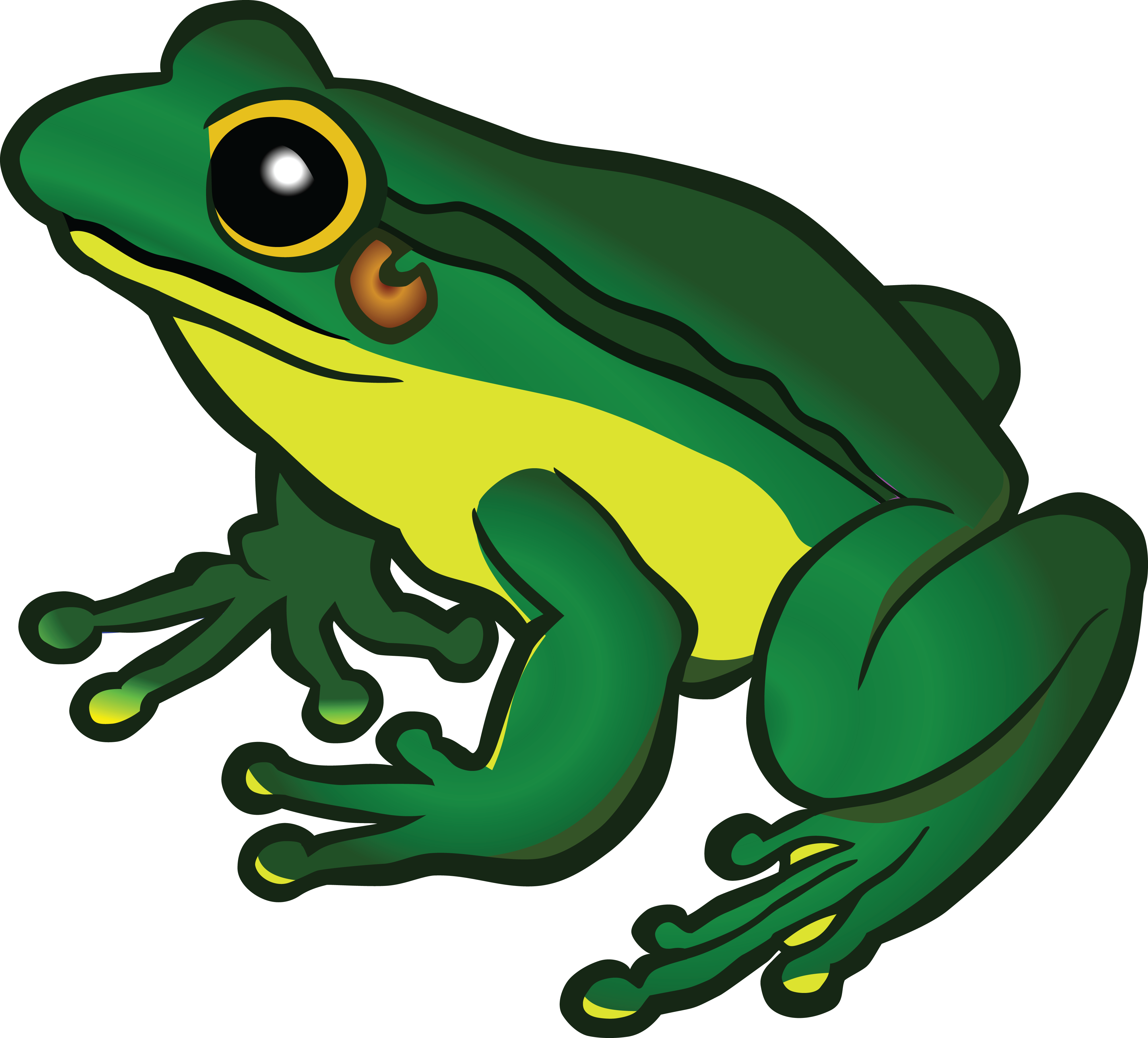 free clipart of a frog rh free clipartof com frog clip art images frog clip art pictures