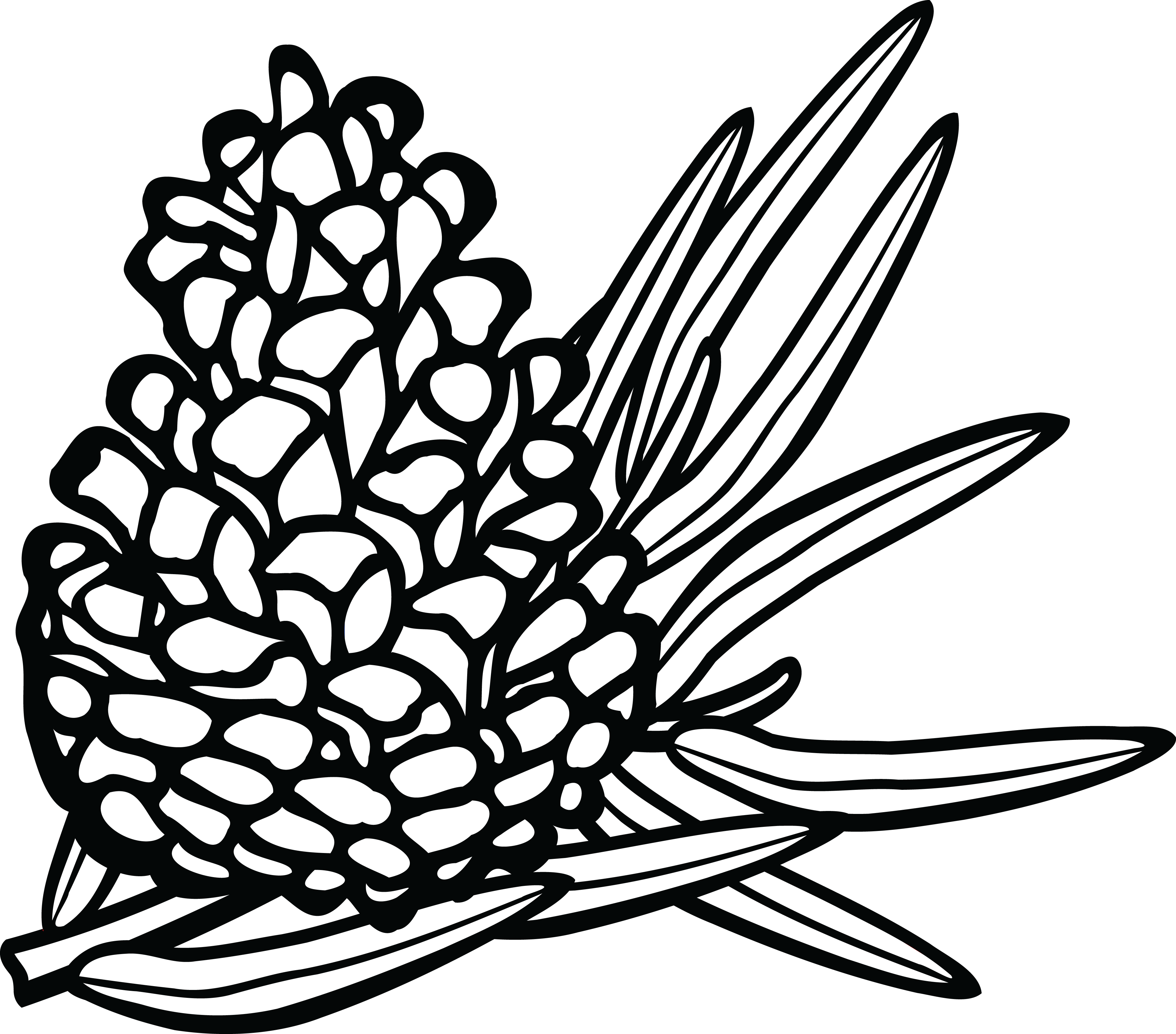 free clipart of a pinecone rh free clipartof com pine cone clipart free christmas pine cone clipart