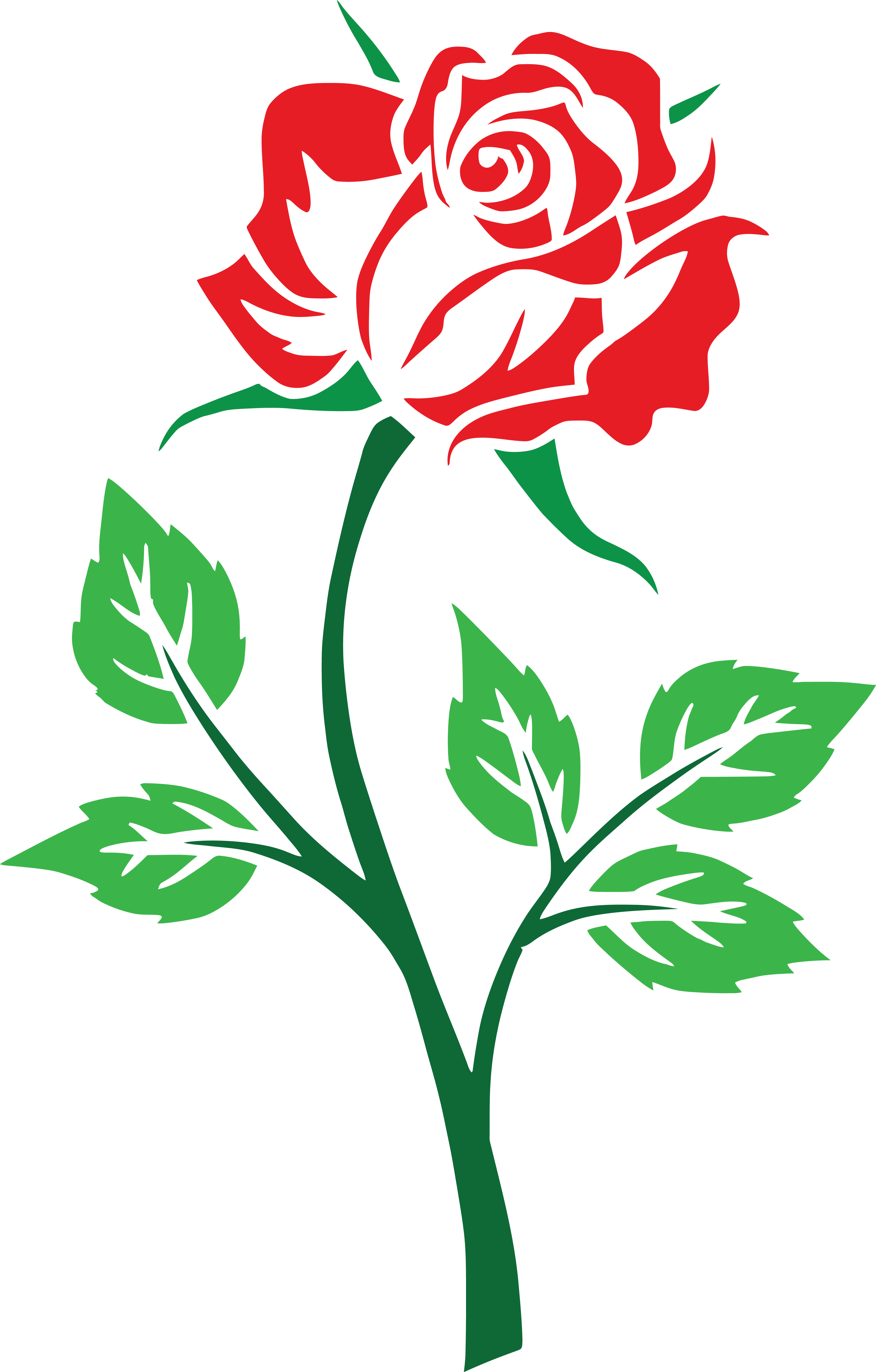 free clipart of a red rose rh free clipartof com red rose clip art borders edges printable red rose clipart png