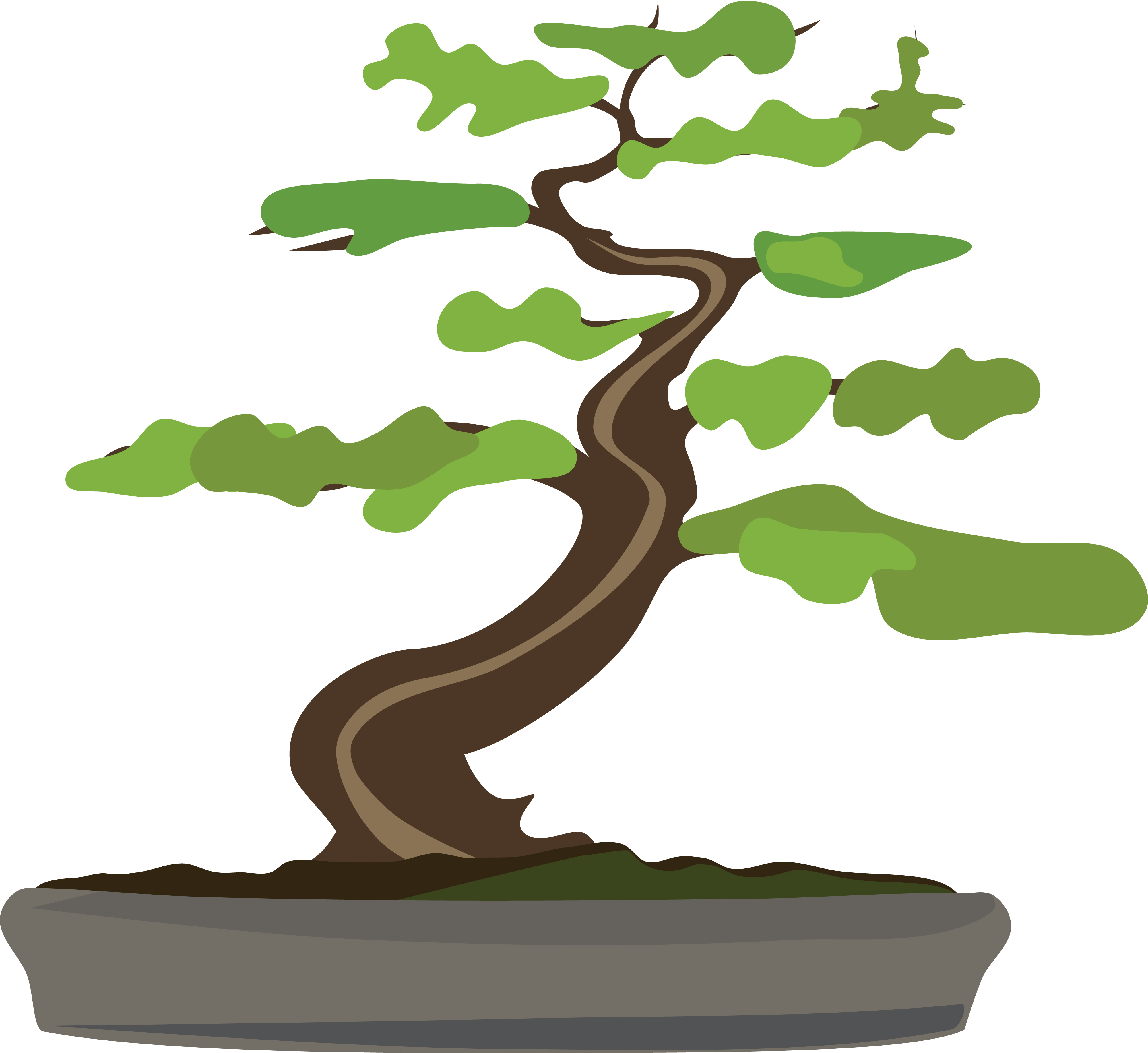 Free Clipart Of A Bonsai Tree