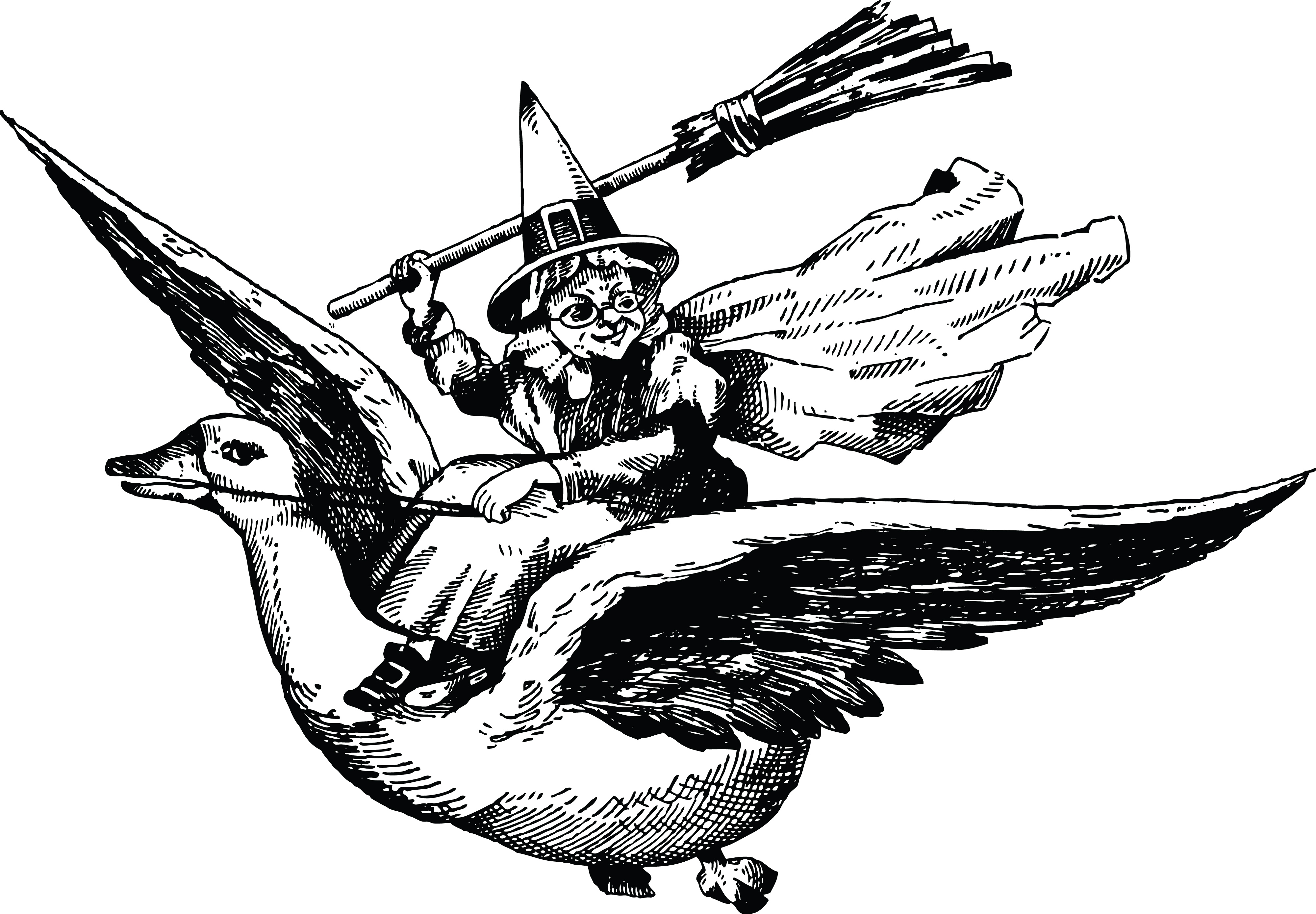 clipart of a black and white flying bird and mother goose