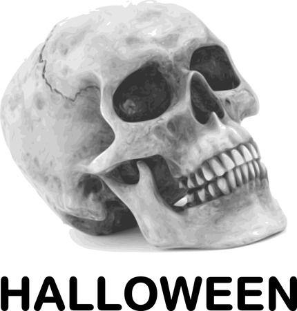 Skull With HALLOWEEN - Free Halloween Vector Clipart Illustration