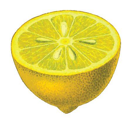 Free Clipart Of A lemon