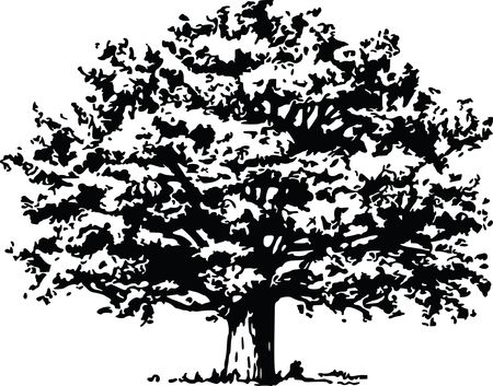Free Clipart Of a tree