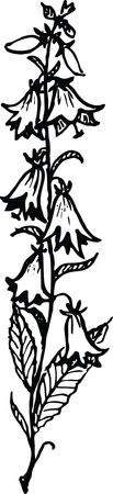Free Clipart of a floral stalk