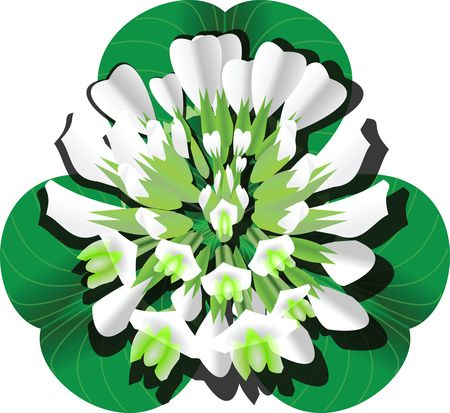 Free Clipart Of A Clover Blossom and Leaves