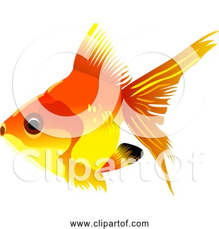 Free Clipart of Goldfish