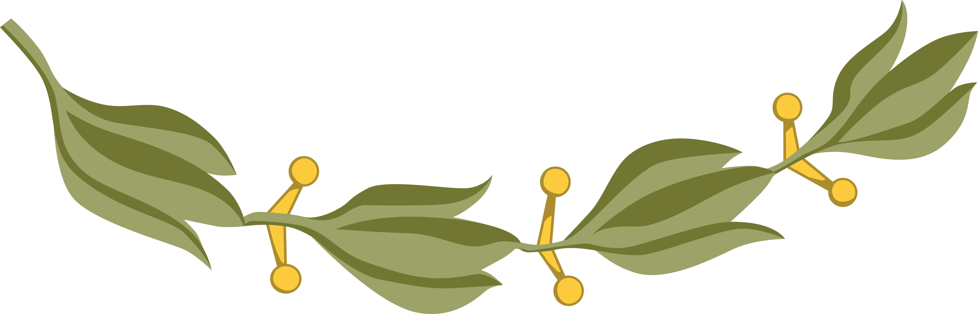 Free Clipart Of A Design Element Of Laurel Leaves