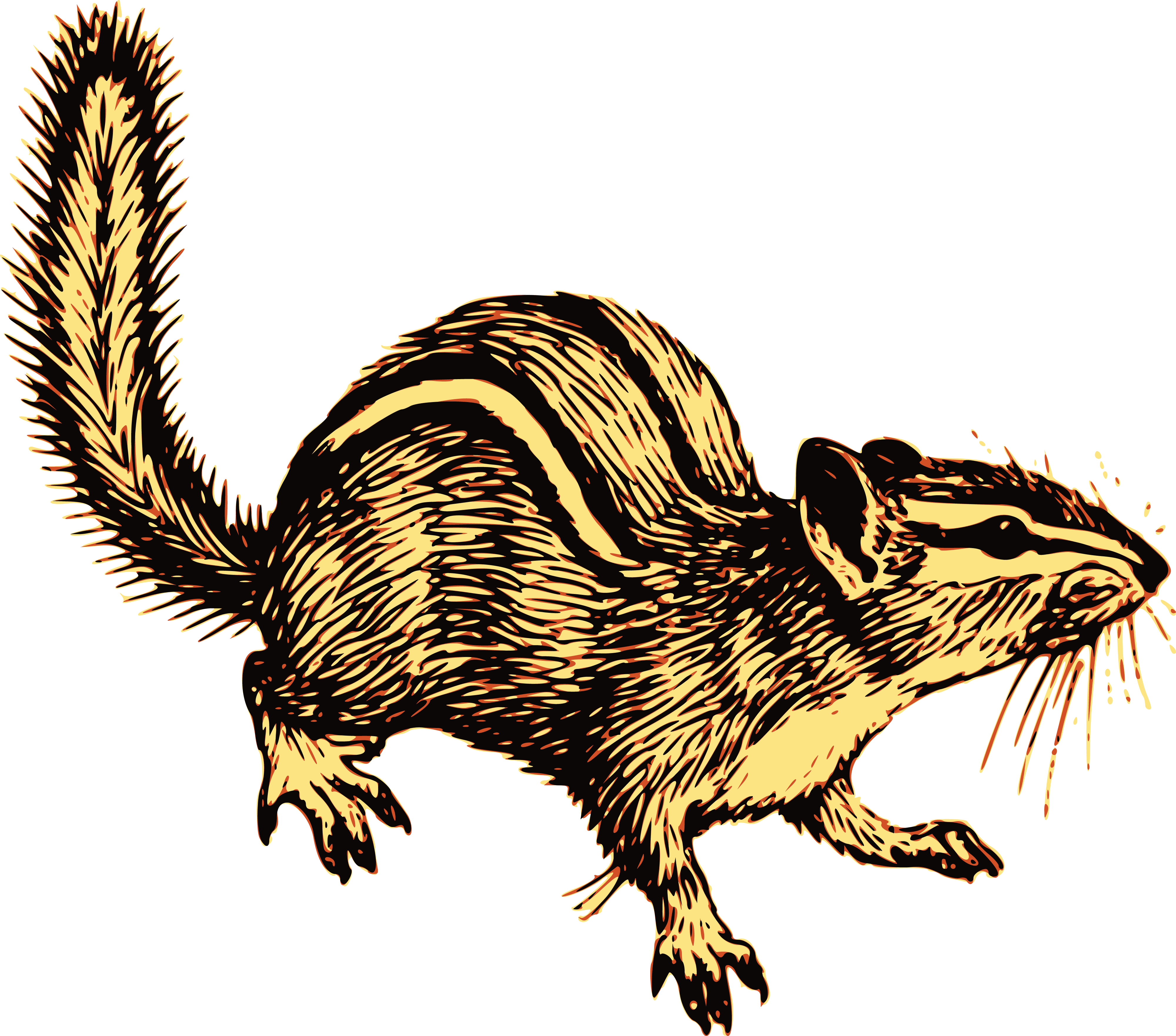 free clipart of an alert chipmunk rh free clipartof com  chipmunks clip art