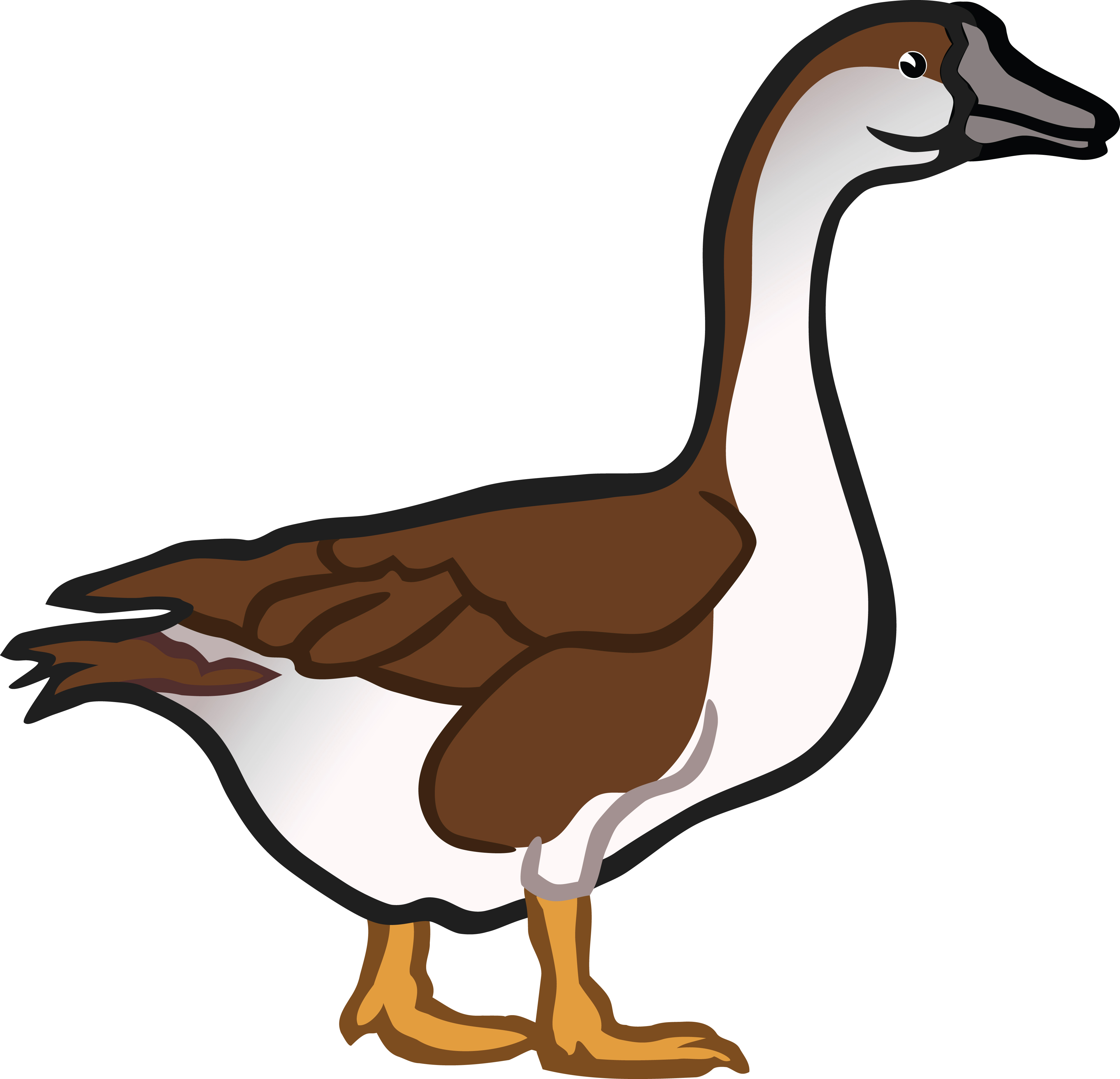 free clipart of a goose rh free clipartof com canada goose clipart goose clip art free
