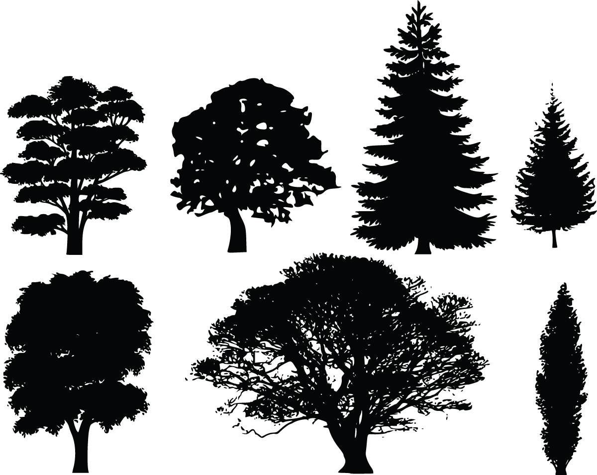 Clip Art Tree Silhouette Clip Art free clipart of 7 tree silhouettes
